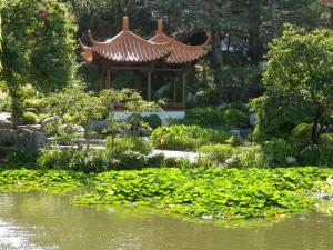 photo garden